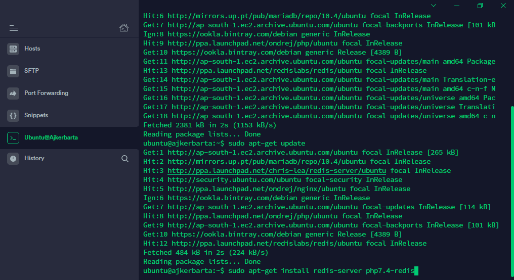 installing redis object cache